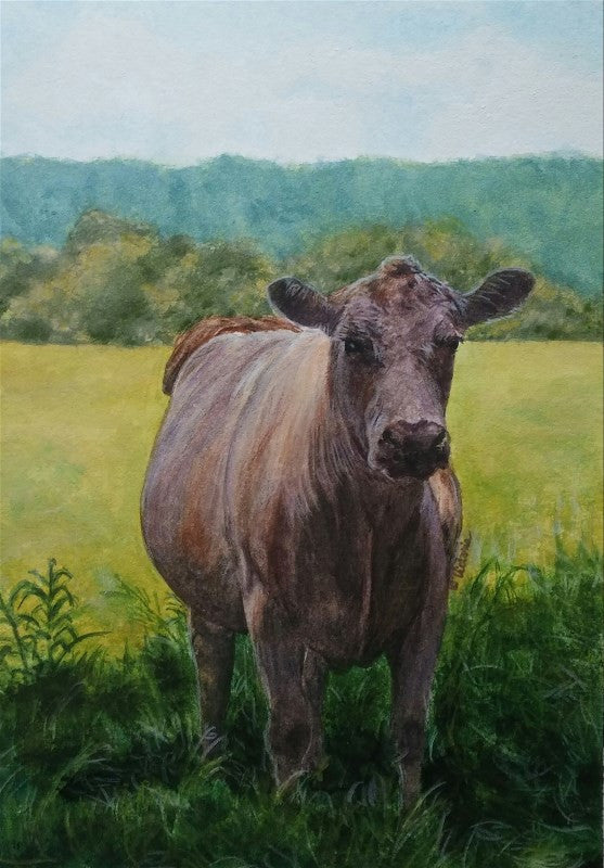 Summer Shade - Cow Art and More