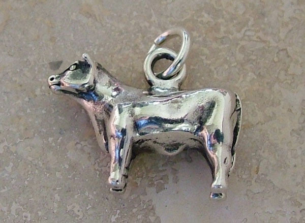 Show Steer Charm - Cow Art and More