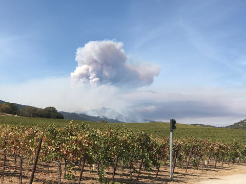 davids view of the fire from napa