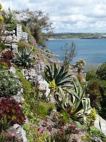 cornwall-coast