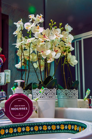 bathroom-orchid-decoration