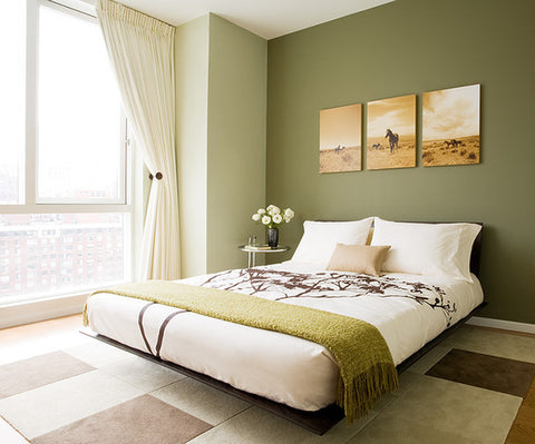 modern-bedroom-houzz