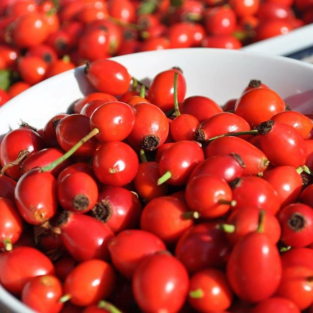 How to Use and Apply Rosehip Oil