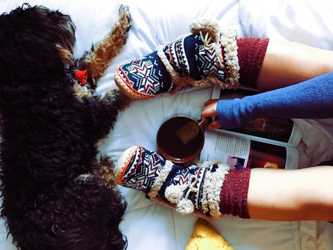 slippers and a dog