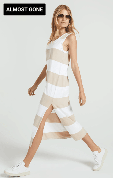 ZSUPPLY Lida striped dress