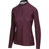 BrioTek 200 Quarter Zip in Raisin (3024)