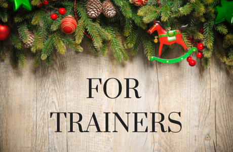 Christmas Horse Gifts For Trainers