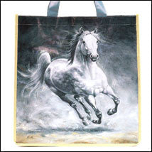 Storm Horse Shopper or Stable Bag AGG875