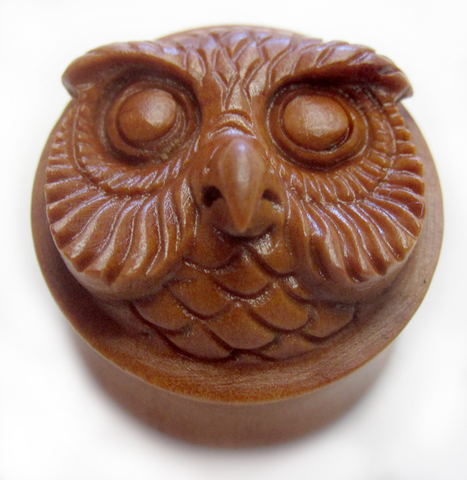 Mr Owl front