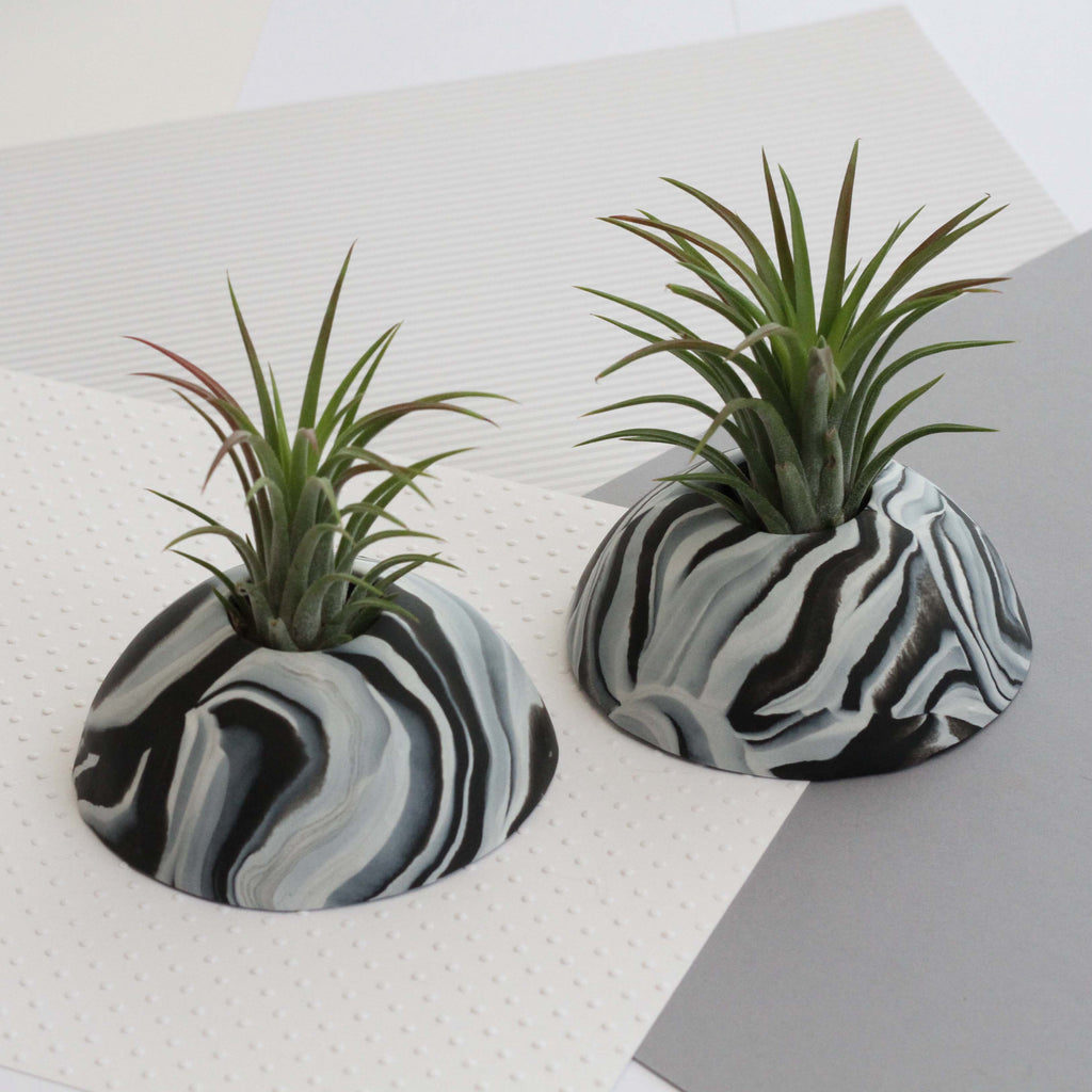 Air Plant holder display dome - Dark Marble
