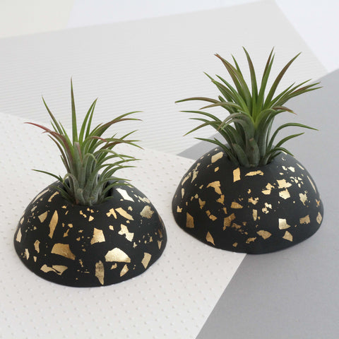 Air Plant holder display dome - Metallic Gold