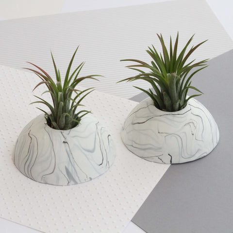 Air Plant holder display dome - Light Marble