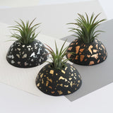 Air Plant holder display dome - Metallic Copper