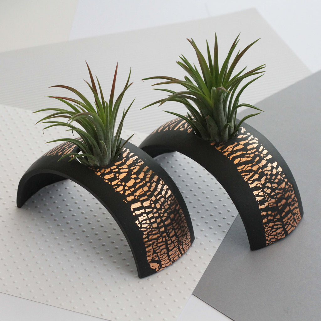 Air Plant holder display arch - Metallic Copper