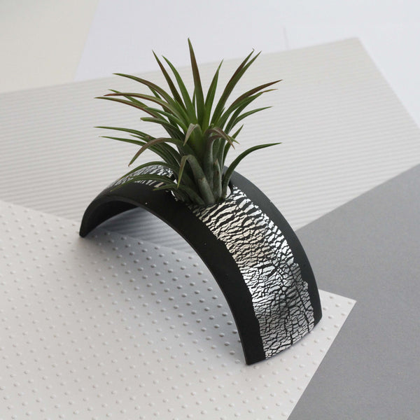 Air Plant holder display arch - Metallic Silver