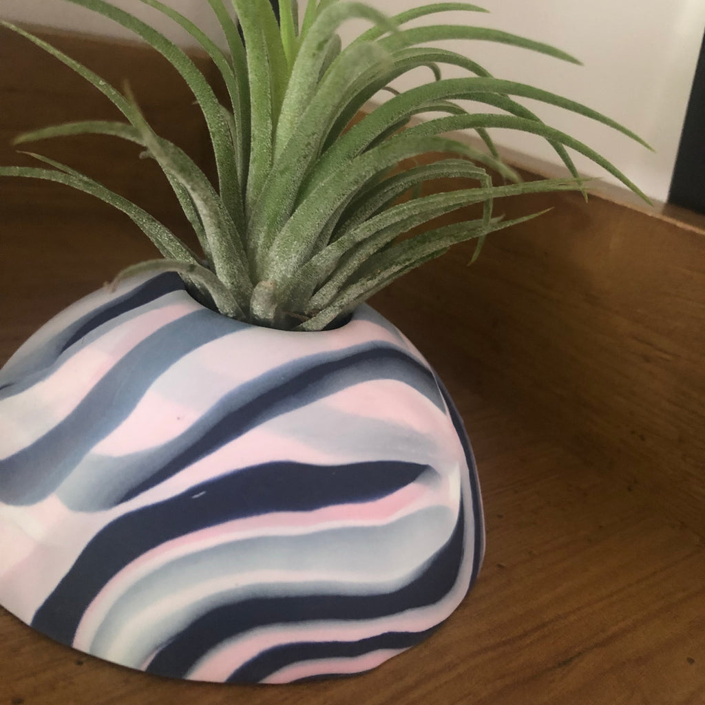 Custom colour Air Plant holder display dome