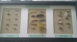 Framed Collection #1 -Fly Fishing Trout Flies Silvereye Flies