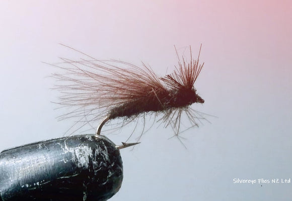 CDC Adult Caddis (3) -Fly Fishing Trout Flies Silvereye Flies