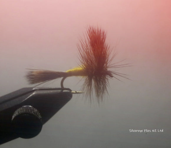 Grizzly Wulff (3) -Fly Fishing Trout Flies Silvereye Flies