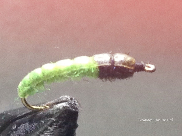 Magic Caddis Custom-tied Dozen -Fly Fishing Trout Flies Silvereye Flies