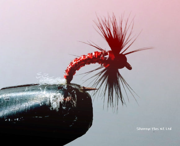Red Neck (3) -Fly Fishing Trout Flies Silvereye Flies