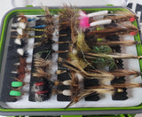 Hamills Sika Collection -Fly Fishing Trout Flies Silvereye Flies