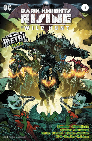 Dark Knights Rising: The Wild Hunt (2018) #1