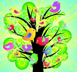 colourful birds in a tree