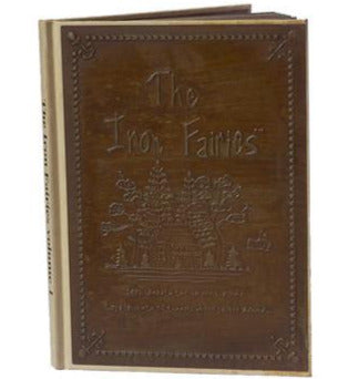 Book - The Iron Fairies Volume 1