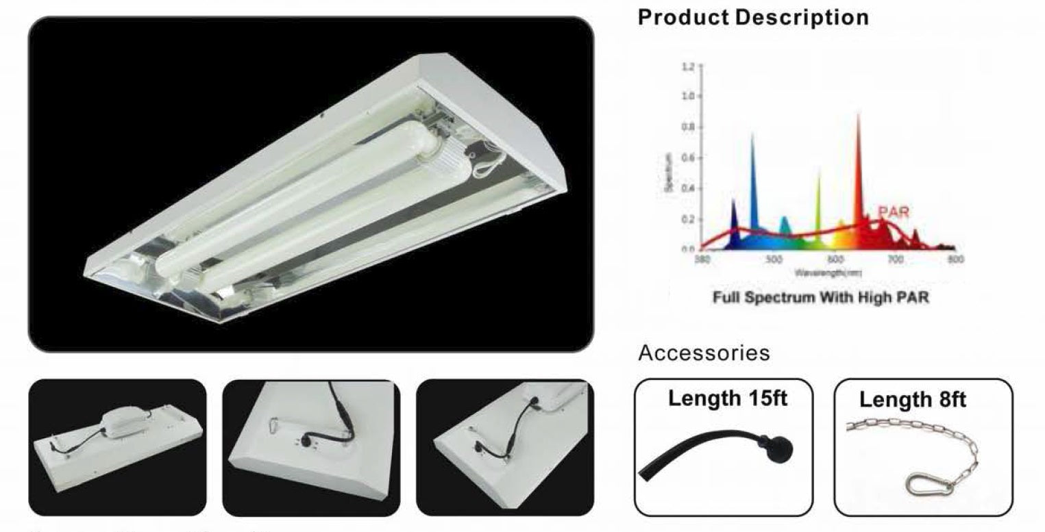 Induction Light Specifications