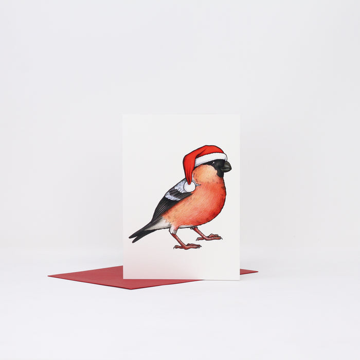 'Bullfinch in a Santa hat' Christmas card by Birds in Hats.