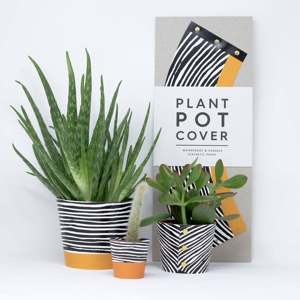 'Wood' plant pot covers.