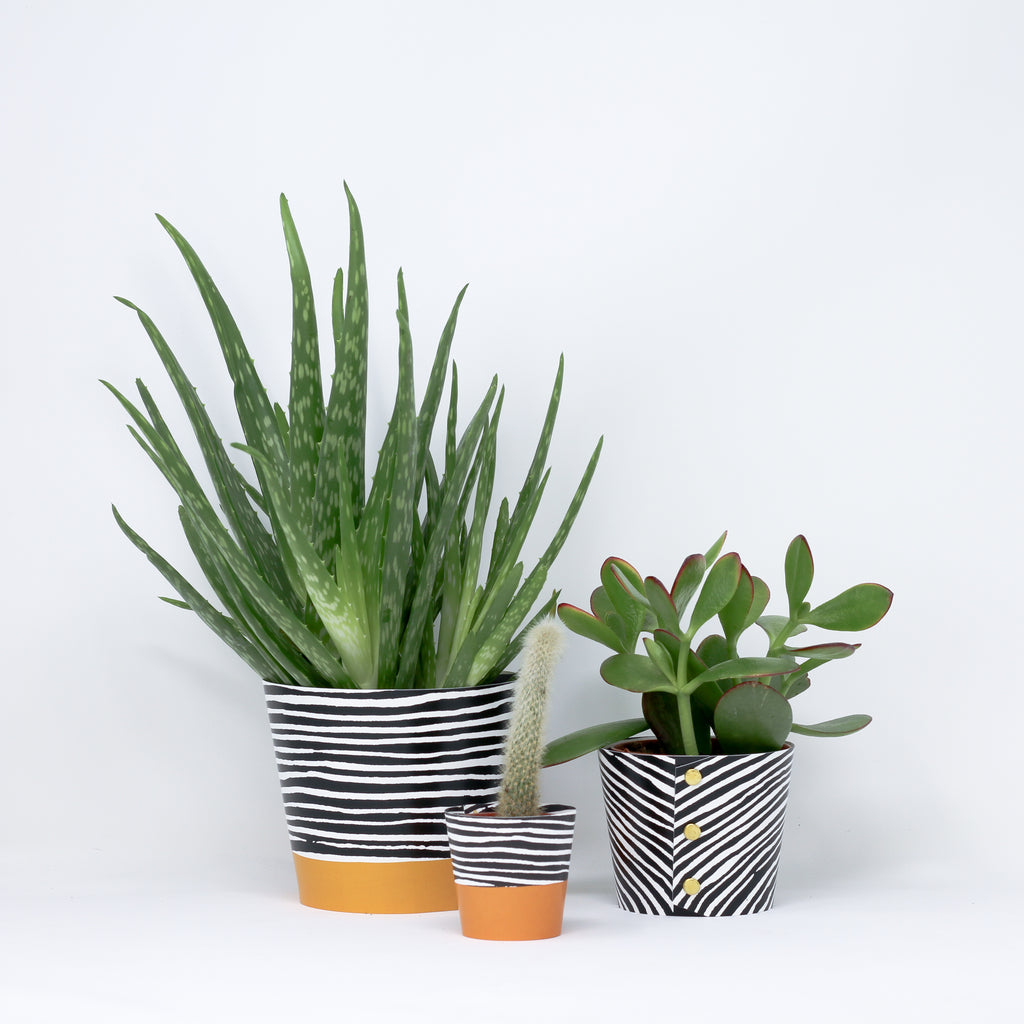 'Wood' plant pot covers by Studio Wald.