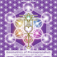 Geometrics of the Premapranahuti