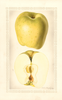 Apples, No Blow (1929)