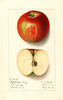 Apples, Red Willow Twig (1913)