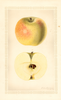 Apples, Winter Banana (1927)