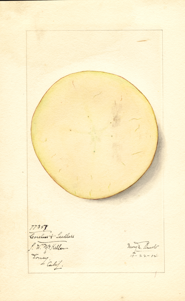Apples, Coreless & Seedless (1914)