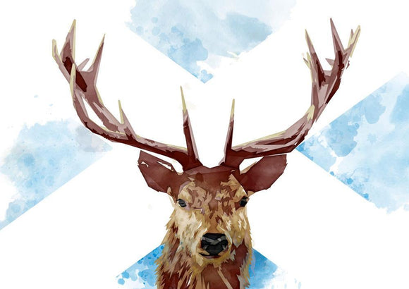 The Scottish stag – giclée print - Indy Prints by Stewart Bremner