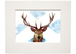 The Scottish stag – small mounted print