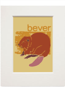 Bever – small mounted print - Indy Prints by Stewart Bremner