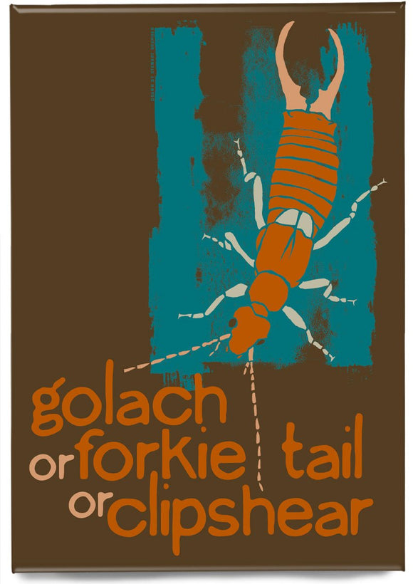 Golach or forkie-tail or clipshear – magnet – Indy Prints by Stewart Bremner