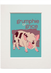 Grumphie or grice – small mounted print - Indy Prints by Stewart Bremner