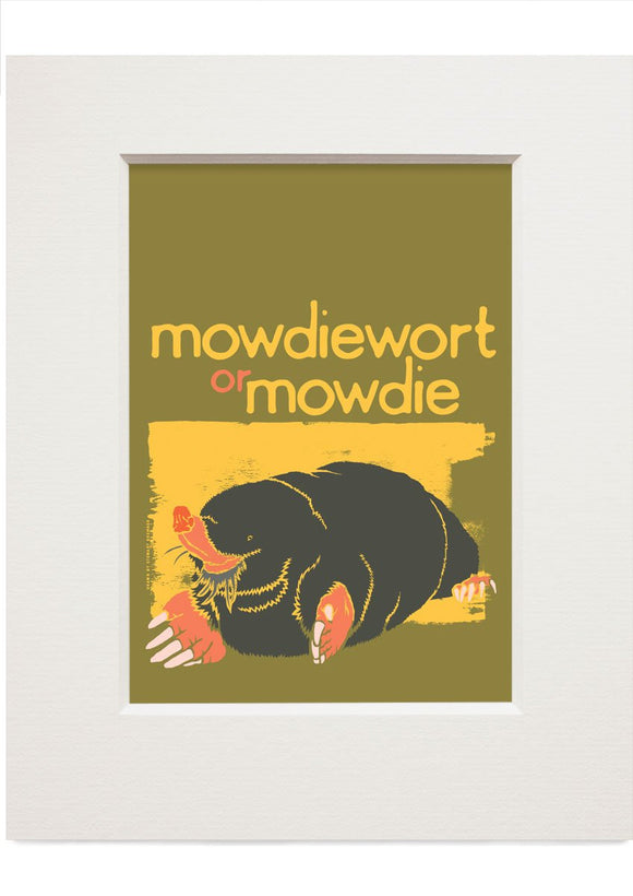 Mowdiewort or mowdie – small mounted print - Indy Prints by Stewart Bremner