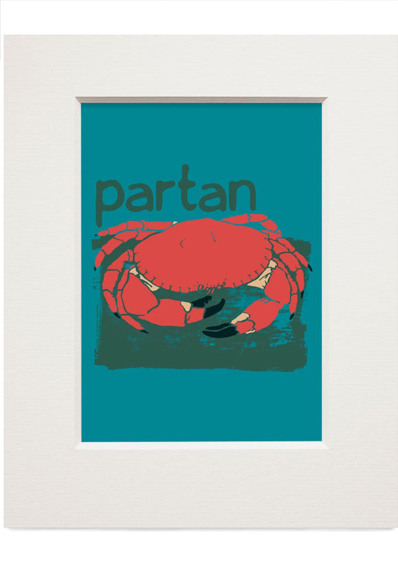 Partan – small mounted print - Indy Prints by Stewart Bremner