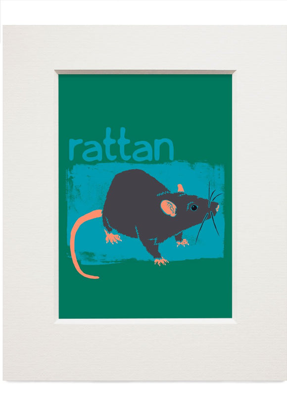 Rattan – small mounted print - Indy Prints by Stewart Bremner