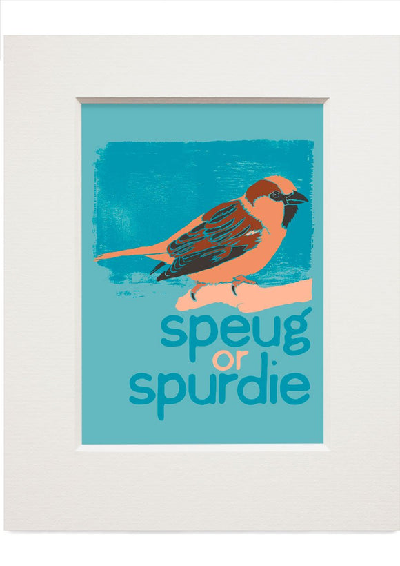 Speug or spurdie – small mounted print - Indy Prints by Stewart Bremner