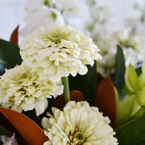 white flowers and leaf arrangements