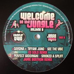 Jungle and DnB Vinyl