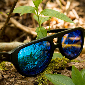 Blue bamboo sunglasses Junglists